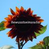 bewusstseinsradio