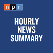 Podcast Hourly News Summary