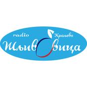 Radio Radio Sljivovica Kraljevo