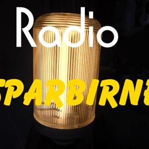 Radio Radio-Sparbirne