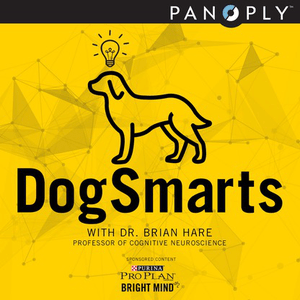 Podcast DogSmarts