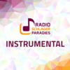 Radio Schlagerparadies - Instrumental