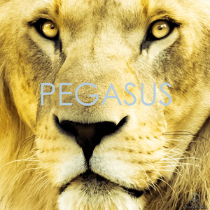 Radio Pegasus