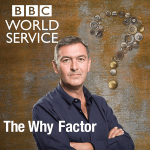 Podcast The Why Factor