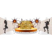 Radio Musik-Karussel-Radio