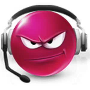 Radio frosch-radio