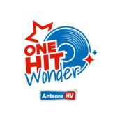 Radio Antenne MV One-Hit-Wonder