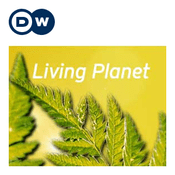 Podcast Living Planet | Deutsche Welle