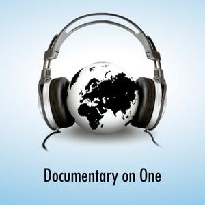 Podcast RTÉ Radio 1 - Documentary on One