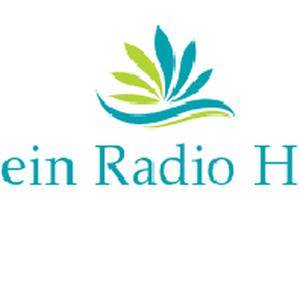 Radio dein-radio-hof