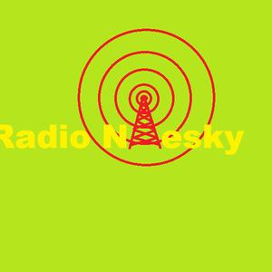 Radio radioniesky