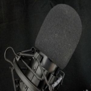 Radio Reportsande