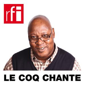 Podcast RFI - Le coq chante